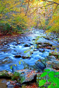 Beautiful nature photo of a creek in The Great Smokies, photographer, John Snell.