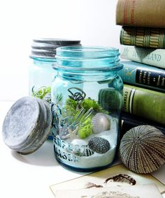 Perfect ball mason jar terrarium with the original zinc lid (circa 1920s) measures about 6 high and is filled with a fresh mix of lichens and reindeer moss, sand, sea shells, starfish, river stones, and grapevine. All mosses and lichens are preserved making this a care-free terrarium (no watering required)! Add a family photo or vacation shot for a unique display.    Listing is for 1 terrarium.    These terrariums make UNIQUE wedding table centerpieces (something blue) and I offer discounts…