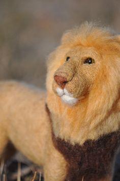needle felting an African Lion