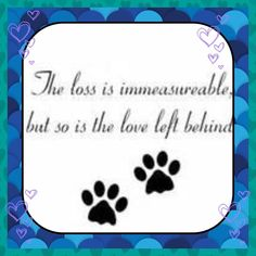 ♥The loss is immeasurable but the so is the love left behind. <3