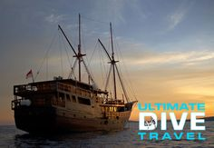 Indonesia Damai Liveaboard With Ultimate Dive Travel - http://www.diveguide.com/forums/showthread.php?21295-Indonesia-Damai-Liveaboard-With-Ultimate-Dive-Travel