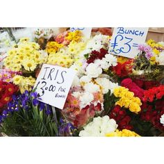 columbia road flower markets ❤ liked on Polyvore featuring pictures, photo, backgrounds and food