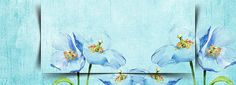 literary fresh flowers hand-painted watercolor background