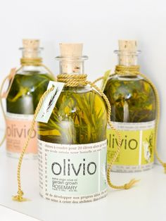 Olivio Olive Oil Favors - Rosemary, Thyme & Basil