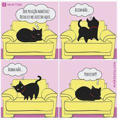 Os gatos são sempre muito exigentes! hehehe #gatos I Love Cats, Crazy Cats, Kawaii Cat, Kitten Meowing, Dogs Of The World, Cute Love, Funny Comics, Kittens Cutest, Funny Cats
