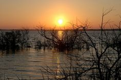 Sunset over Lake Griffin