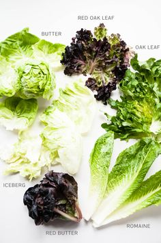 Lettuce Family: The most well-known of salad greens, lettuce is renowned for its mild, sometimes even sweet flavor that goes well with just about anything. Lettuce grows in all shapes and sizes, but generally falls into one of two categories: head lettuce or loose-leaf lettuce.