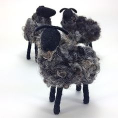Breed Specific Sheep - Grey Gotland - this is the dark color Gotlands are known for - I love the silvery mix in this fleece!