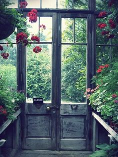 Doorway Diaries