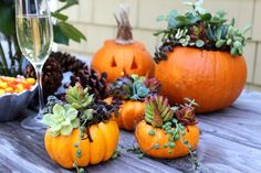 Succulent Pumpkins | DIY Fall and Halloween Pumpkin Carving Instructions | Great idea for a Pumpkin Table Centerpiece | http://www.shemakesahome.com/