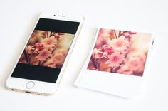Polaroid Prints are perfect for Instagram images- only 35¢ each at Persnickety Prints