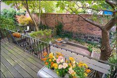 Backyard brick wall.