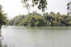 Ranganathittu bird sanctuary, Mysore