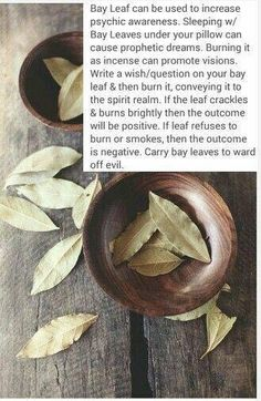 We use bay leaves as a substitute for cocoa leaves, which the Q'ero Paqo use in ceremony. I love these other witchy meanings, I can totally use them in my ceremonies and prayer work! Reiki, Magick Spells, Hoodoo Spells, Wiccan Witch, Witchcraft Herbs, Witchcraft Spells For Beginners, Wicca For Beginners, Wiccan Magic, Green Witchcraft