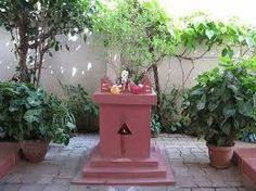 نتيجة بحث الصور عن tulasi plant in temples and villages