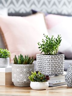 Urban Modern Coffee Table Decor