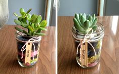 Succulent Mason Jar Gift