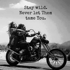 Have you ever wondered why there are so many biker quotes? The biker community is one of the. Harley Davidson Quotes, Harley Davidson Motorcycles, Custom Motorcycles, Custom Baggers, Triumph Motorcycles, Biker Chick, Biker Girl, Lady Biker, Biker Love