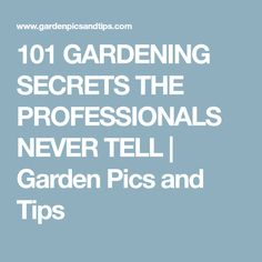 101 GARDENING SECRETS THE PROFESSIONALS NEVER TELL   Garden Pics and Tips
