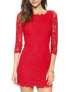 haoduoyi Women's Lace Embroidery 3/4 Seeved Zipper Back Dress X-Small Red HaoDuoYi http://www.amazon.com/dp/B00RGEGZ8Y/ref=cm_sw_r_pi_dp_ttFPvb10XCQ6M