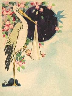 stork babies