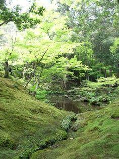 京都新緑散歩3   +西芳寺+ : HAPPY♪ POWER LIFE
