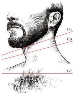Structure de barbe