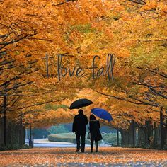This is for my husband. I so want to take a walk with you like this!!!