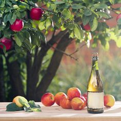 7 Innovative Hard Cider Brands You Need to Drink Now: From barrel-aged to barbecue-smoked, these are the experimental ciders lifting the apple to bold new heights. Cider Cocktails, Spring Cocktails, Summer Drinks, Hard Cider Brands, Benefits Of Gluten Free Diet, Cider House Rules, Mets Vins, Craft Cider, Hard Apple Cider