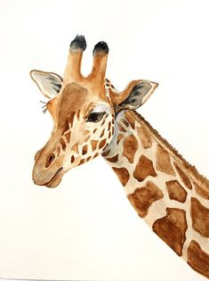 giraffe original watercolor painting giraffe painting animals of Africa painting 24x32cm (9,4x12,6in)