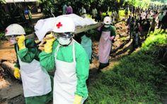 Ebola: MSF rejeitam dinheiro da Austrália e pedem envio de pessoal   #Camberra, #Ebola, #Isolamento, #Logística, #MSF, #Surto
