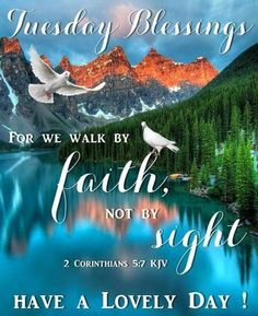 We walk by faith, not by fight. Tuesday Blessings, Have A Lovely Day! Tuesday Quotes Good Morning, Good Morning Happy Sunday, Have A Happy Day, Good Morning Greetings, Good Night Quotes, Morning Quotes, Saturday Quotes, Happy Weekend, Good Morning Funny Pictures