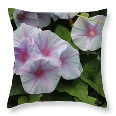 Morning Glory throw pillow on Pixels.
