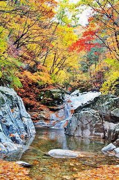 Naejang Mt. in Korea