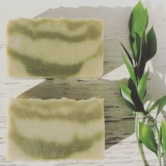 Seaweed soap  organic 100% all natural handmade by PureNakedSoap