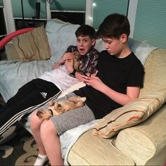 the puppies are so cute 💖💖 (Not as cute as.Max and Harvey)😯😉 T Mills, Harvey Mills, Love My Husband, To My Future Husband, Max And Harvey, Love U So Much, My Love, Minions, Dream Boyfriend