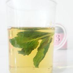 http://tea-descendants.myshopify.com/blogs/news/76147333-get-creative-with-loose-leaf-teas Iron Goddess Mint Tea