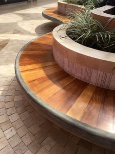 Detalle de banca con jardinera alta. Acabado en madera con bordes boleados en cemento pulido.  Real Plaza Trujillo.