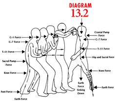 Free Blank Venn Diagram moreover Web Diagram Maker in addition 5 Part Circle Diagram in addition ZWR1Y2F0aW9ud29ybGQqY29tfHRvb2xzX3RlbXBsYXRlc3xFV192ZW5uZGlhZ3JhbV80LXRodW1iKnBuZw ZWR1Y2F0aW9ud29ybGQqY29tfHRvb2xzX3RlbXBsYXRlc3xFV192ZW5uZGlhZ3JhbV80KmRvYw besides 5 Way Venn Diagram Template. on venn diagram generator 3 circles