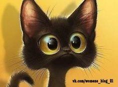удивленный кот - Поиск в Google