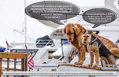 Akraboats mantiene el super precio de la licencia de navegación a 90 €! Además, le da de comer en un ambiente marino plenamente! Qué te parece?