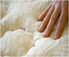 How to Get Rid of Bed Bugs at Home