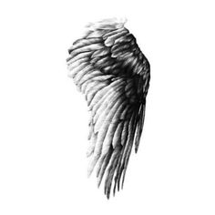 Angel Wing Limited Edition Art Print - 30 x 40cm (130 RON) ❤ liked on Polyvore featuring home, home decor, wall art, wings, fillers, backgrounds, art, decorations, effect and doodle