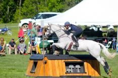 Off-the-track Thoroughbreds are taking Rolex Kentucky by storm! #OTTB