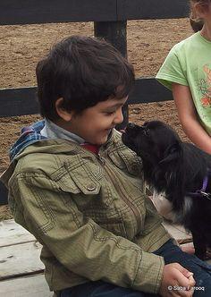 Puppy Love @ Trailwood Farms - Caledon, On,