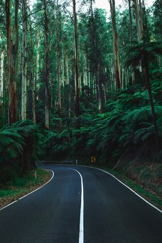 "motivationsforlife: ""Roads less travelled by Ben"""