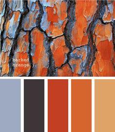 Rich Autumn color palette