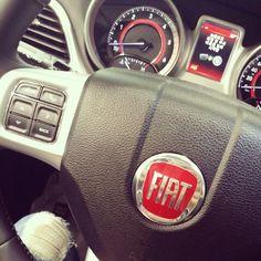 Driving w. Fiat ♡