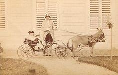 F. Jamrath CDV photo Kleiner Junge auf einem Schaukelpferd - Berlin um 1870 | eBay