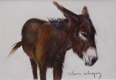 Donkey. / Coloured pencil on paper